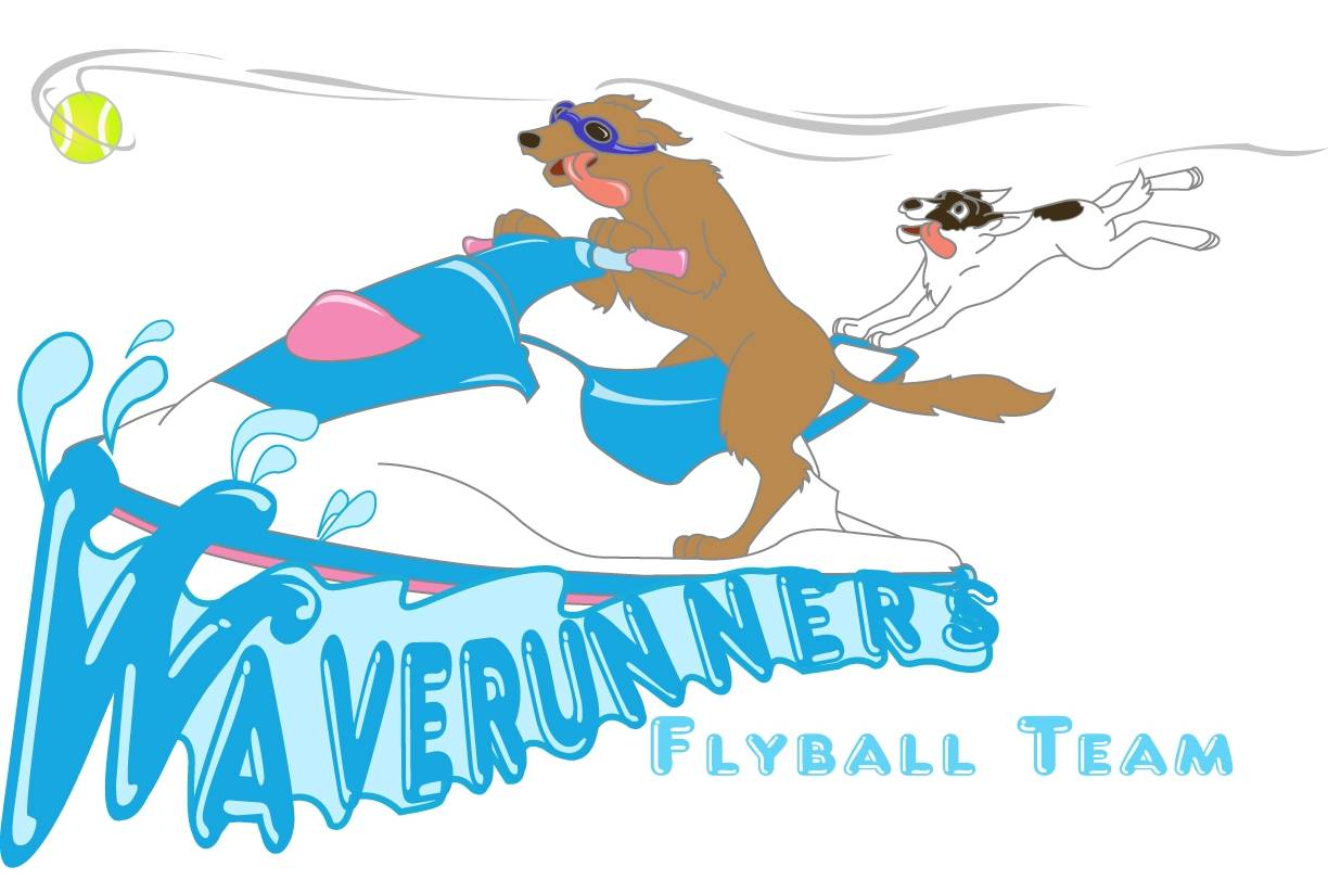Come run the flyball waves with us!